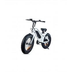 Bicicleta eléctrica con...